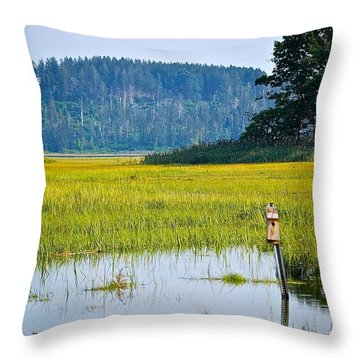 Ipswich Nature Preserve  Throw Pillow