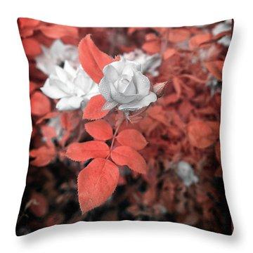 Ir Rose  Throw Pillow by Paul Seymour