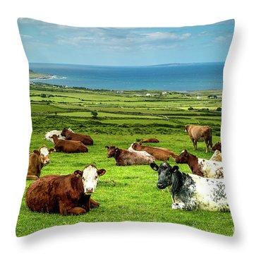 Ireland - Westcoast Throw Pillow by Juergen Klust