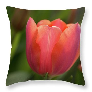 Throw Pillow featuring the photograph Iridescent Tulip by Mary Jo Allen