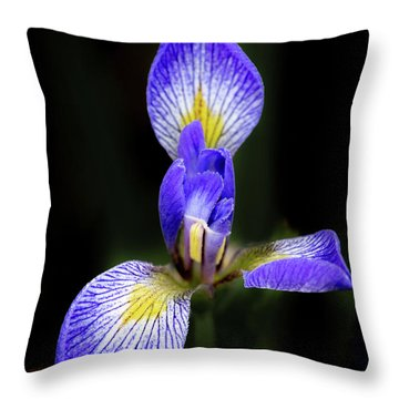 Iris #1 Throw Pillow