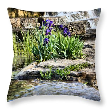 Iris 1315hdr Throw Pillow