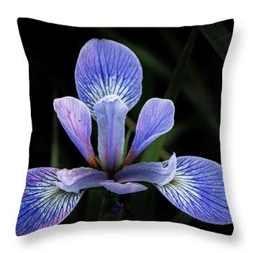 Iris #4 Throw Pillow