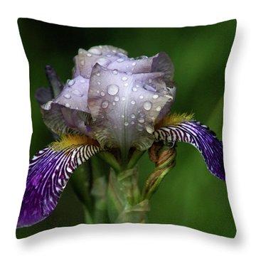 Iris After The Rain 1409 H_2 Throw Pillow