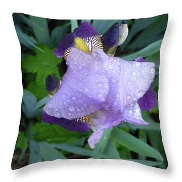 Iris After The Rain IIi Throw Pillow