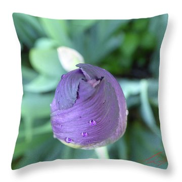 Iris After The Rain V Throw Pillow