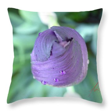 Iris After The Rain Vi Throw Pillow