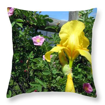 Iris And Wild Roses Throw Pillow by Will Borden