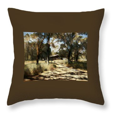 Iris Barn Throw Pillow