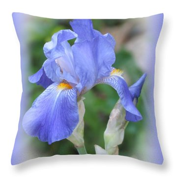 Iris Beauty Throw Pillow by MTBobbins Photography