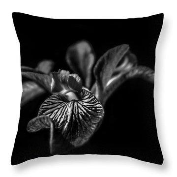 Iris Throw Pillow by Bulik Elena