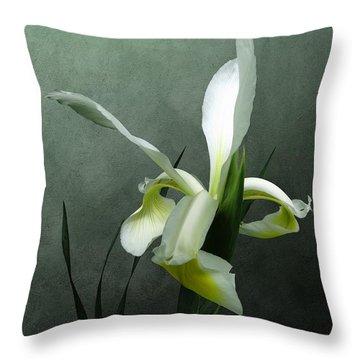 Iris Celebration Throw Pillow