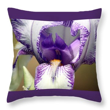 Throw Pillow featuring the photograph Iris Close-up by Sheila Brown