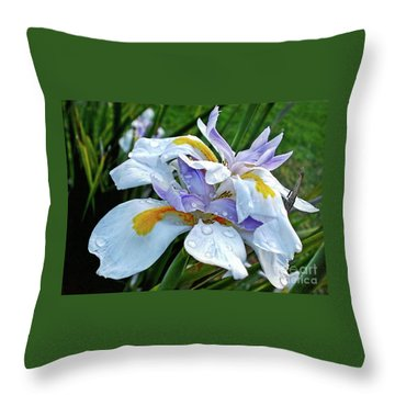 Iris Enjoying The Sunshine Throw Pillow by Kaye Menner