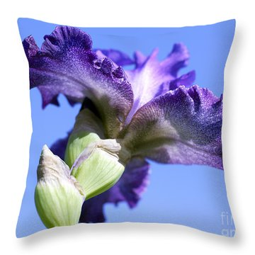 Iris Flowers Throw Pillow by Tony Cordoza