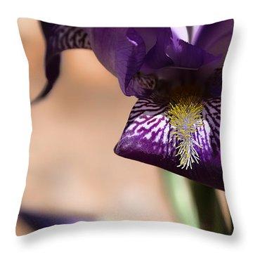 Iris Gemanica Throw Pillow