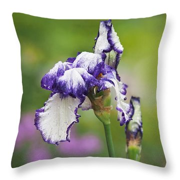 Throw Pillow featuring the photograph Iris Loop The Loop  by Rona Black