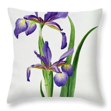 Purple Flower Throw Pillows