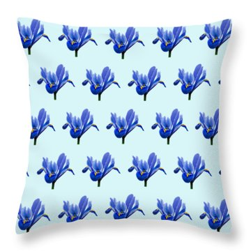 Throw Pillow featuring the photograph Iris Recticulata-2 by Paul Gulliver