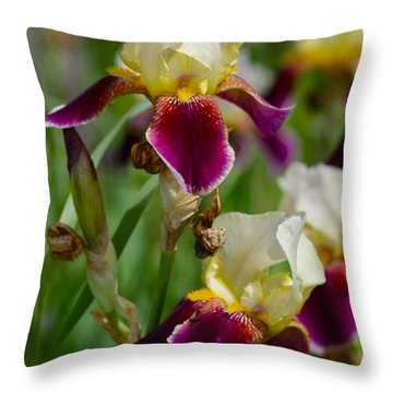 Iris Spring Throw Pillow by Karon Melillo DeVega