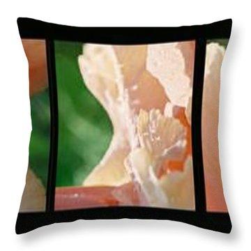 Throw Pillow featuring the photograph Iris by Steve Karol