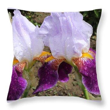 Irises Sparkling With Rain Droplets Throw Pillow