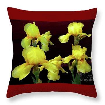 Irises Yellow Throw Pillow by Jasna Dragun