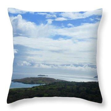 Irish Countryside 4 Throw Pillow