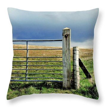 Throw Pillow featuring the photograph Irish Field by Patricia Strand