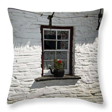 Irish Kettle Of Geraniums County Cork Ireland Throw Pillow by Teresa Mucha