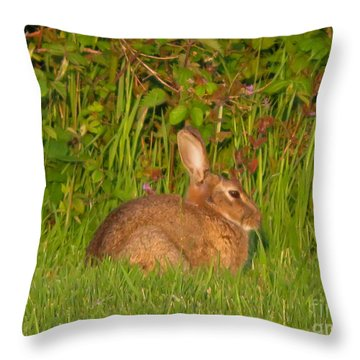 Irish Rabbit Throw Pillow by Cindy Murphy - NightVisions