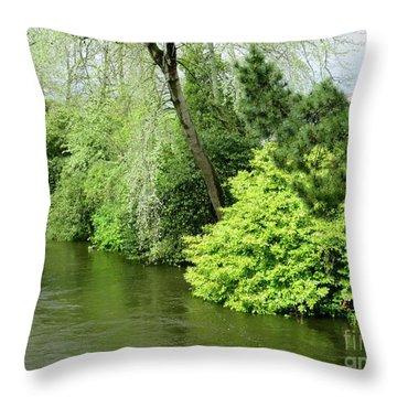 Irish River 2 Throw Pillow