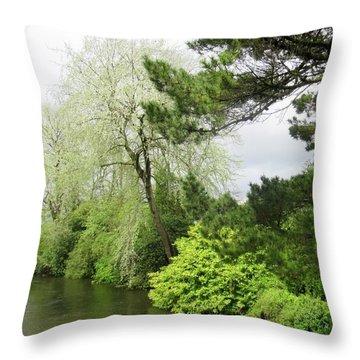 Irish River 3 Throw Pillow