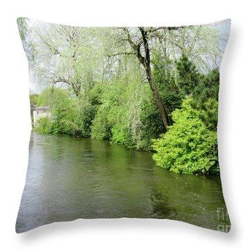 Irish River Throw Pillow