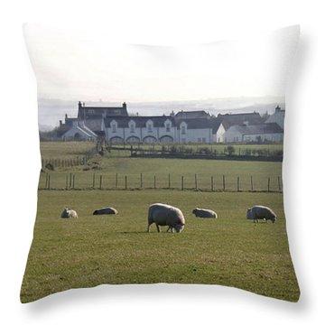 Irish Sheep Farm Throw Pillow by Henri Irizarri