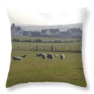 Irish Sheep Farm I Throw Pillow by Henri Irizarri