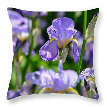 Irisses Throw Pillow