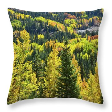 Throw Pillow featuring the photograph Ironton Fall Color by Ray Mathis