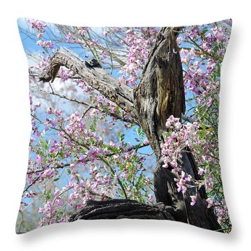 Ironwood In Bloom Throw Pillow