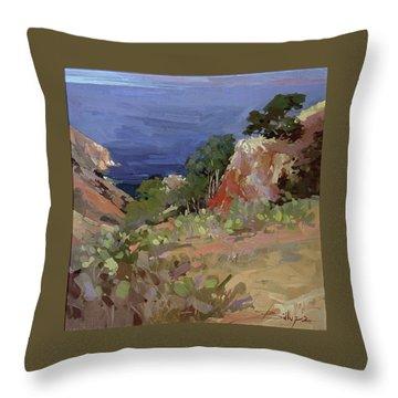 Ironwoods At Goat Harbor Throw Pillow
