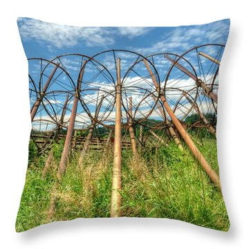Irrigation Pipes 1 Throw Pillow by Jerry Sodorff