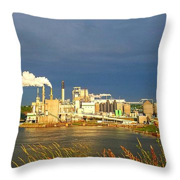Irving Mill Throw Pillow