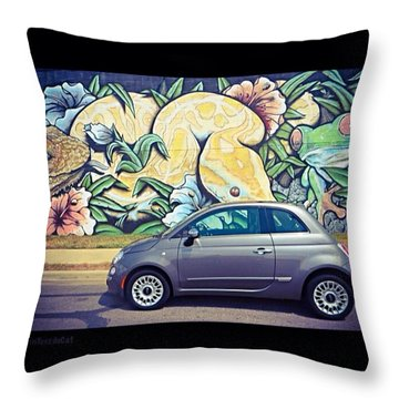 Is It Safe To Drive Mr. #fiat Into The Throw Pillow