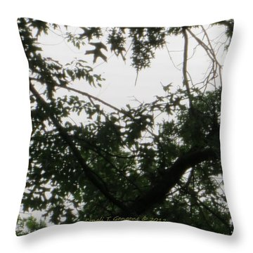 Is This My Heart? Throw Pillow