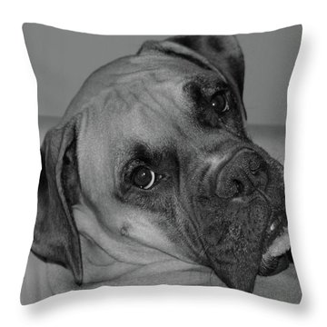 Is This Necessary Throw Pillow by DigiArt Diaries by Vicky B Fuller