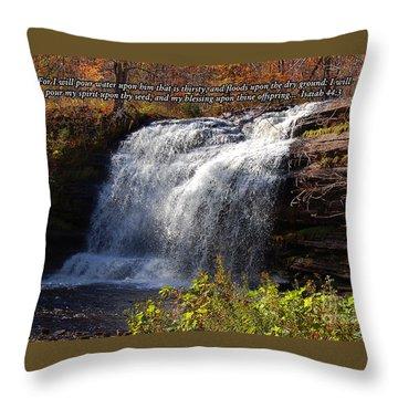 Isaiah 44 Throw Pillow by Diane E Berry