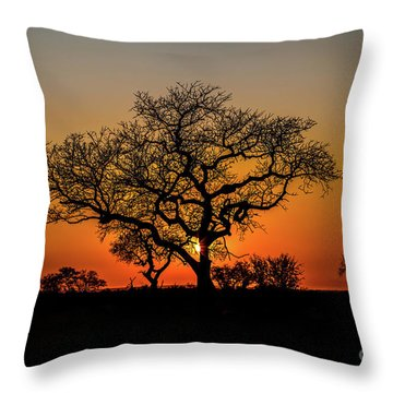 Isimangaliso Wetland Park Throw Pillow