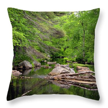 Isinglass River, Barrington, Nh Throw Pillow by Betty Denise