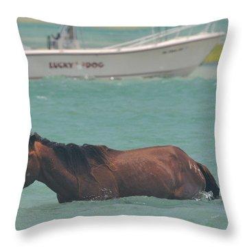 Island Horse Throw Pillow