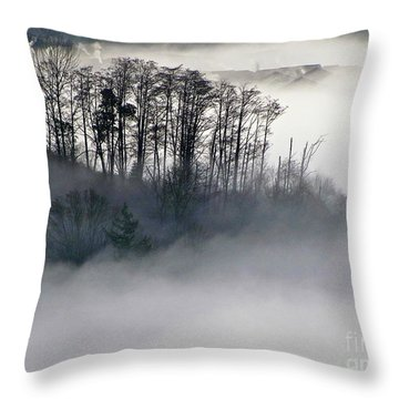 Island In The Morning Mist Throw Pillow